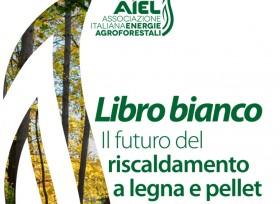 Il futuro del riscaldamento a biomassa, il libro bianco di AIEL
