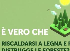 Gestione delle foreste: 3 miti da sfatare